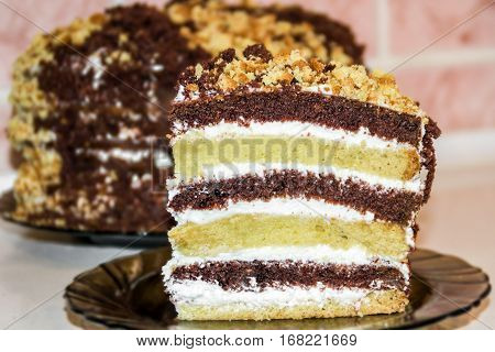 piece of cake (chocolate and vanilla shortcake) with sour cream on the background of the cake
