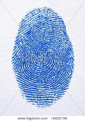 close up image of blue finger print