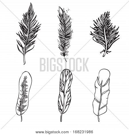 Set Of Ethnic Feathers On A White Background. Vintage Artistical