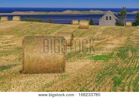 Bales of hay or straw along the ocean in rural Prince Edward Island, Canada