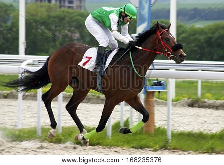 Finish horse race for the prize of Bolshoi Vesenni in Pyatigorsk,Northern Caucasus, Russia.