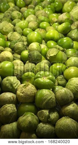 Background of fresh green tomatoes. Shallow focus.