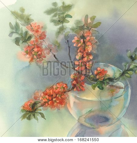 Branches of Japanese blooming quince. Watercolor illustration. Red flower still-life