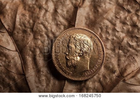 Portrait of the tsar Nikolay of the second Romanov on a gold coin, the last emperor of the Russian Empire against the background of yellow dry leaves.