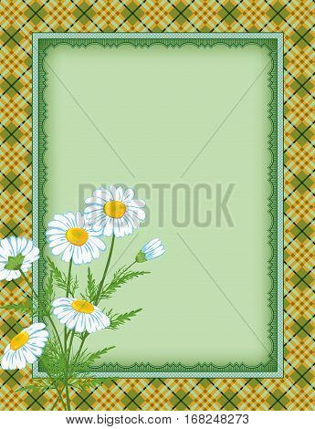 Ornate color rectangular frame, plaid seamless background, daisy flowers. Template for card, advertisement, invitation. Swatch is included in vector file. Clipping mask applied.