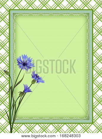 Ornate color rectangular frame, plaid seamless background, cornflowers. Template for card, advertisement, invitation. Swatch is included in vector file. Clipping mask applied.