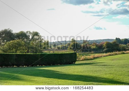 Green lawn with a neatly trimmed hedge. Shot of the English countryside taken in the late afternoon in October.