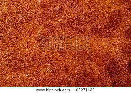 Brown leather texture background.Leather craft. Copy space for text.