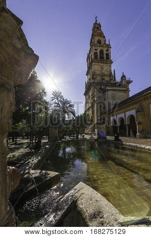 The Belfry of the Mosque.                                                                     Tower of the belfry that is placed inside the enclosure of the Mosque Cathedral of Cordoba