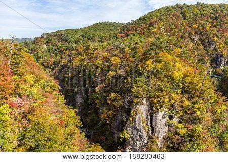 Naruko canyon with autumn foliage