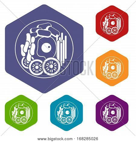Dish of korean food icons set rhombus in different colors isolated on white background
