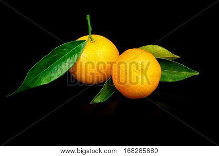Two fresh tangerines with leaves on black background