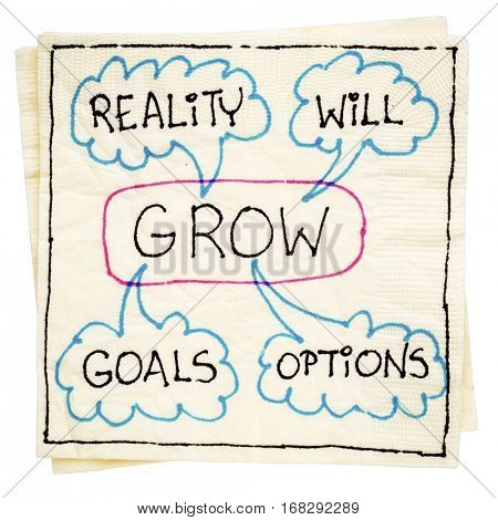 GROW (goals, reality, will and options) acronym - napkin doodle