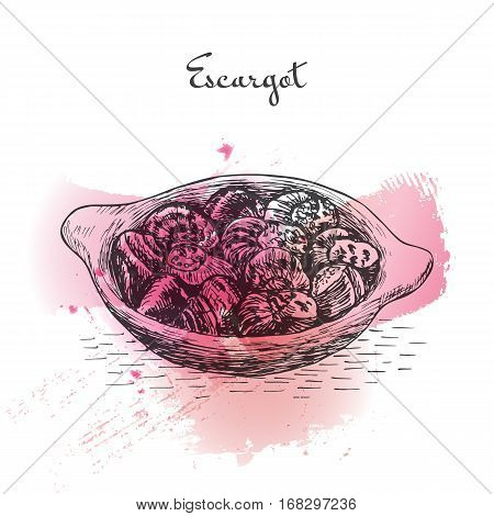 Escargot watercolor effect illustration. Vector illustration of French cuisine.