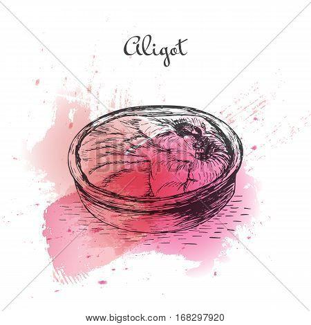 Aligot watercolor effect illustration. Vector illustration of French cuisine.