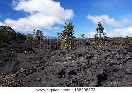 Lava At Hawaii, United States Of America