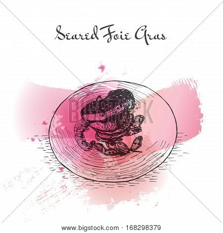 Seared Foie Gras watercolor effect illustration. Vector illustration of French cuisine.