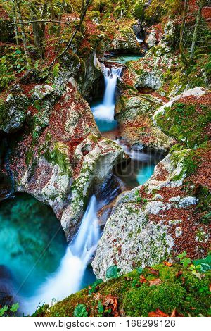 Mountain Creek Autumn In The Lepena Valley