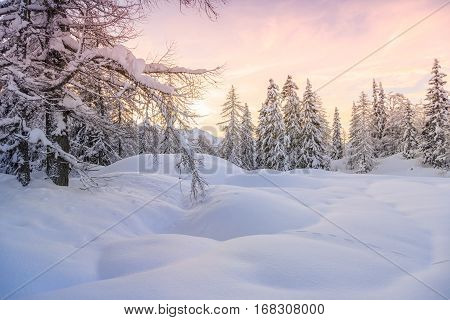 Winter landscape near Vogel ski center in mountains Julian Alps Slovenia