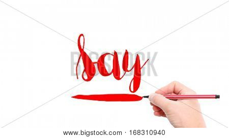 The verb say written on a white background