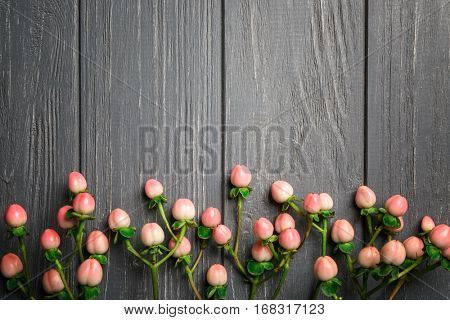 Hypericum on gray wooden background