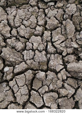 Drought Dry soil Cracked Ground texture background