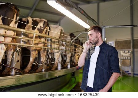 agriculture industry, farming, technology, people and animal husbandry concept - young man or farmer calling on cellphone and cows at rotary parlour system on dairy farm