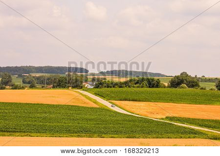 View Of Cultivated Field In The Countryside