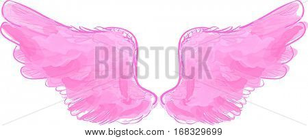 illustration with pink wings isolated on white background
