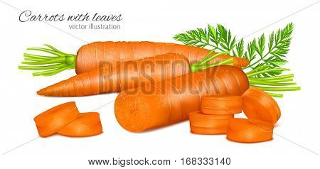 Carrots with leaves and carrot slices. Fully editable handmade mesh. Vector illustration.