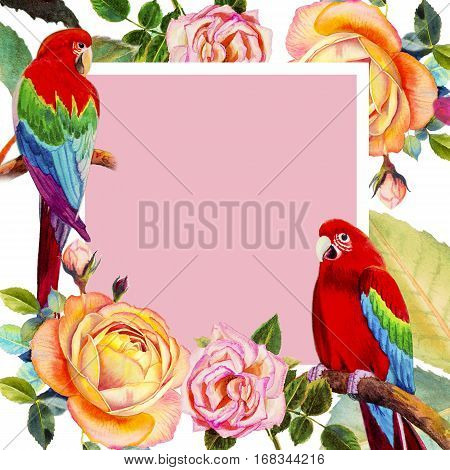 Painting watercolor illustration realistic postcard lovers bookcove colorful flower of Macaw bird roses beauty and trendy seamless floral in white background.