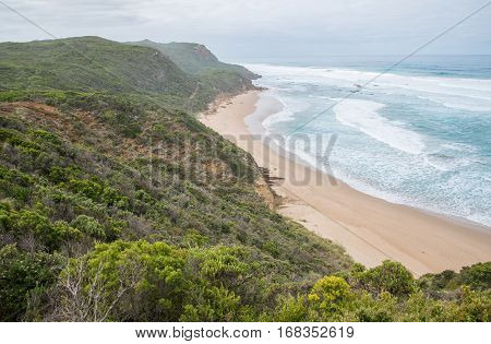 Great Ocean Raod nature trails the Castle Cove in Victoria state of Australia.