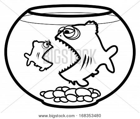 Fishes in the aquarium on white background