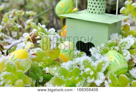 easter eggs among frosted plants in a garden