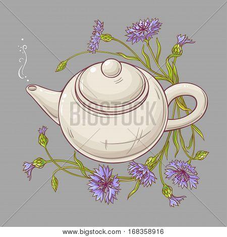 cornflower tea in teapot on color background
