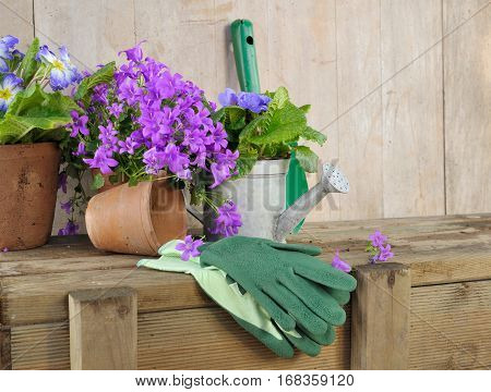 flowerpots and gardening accessories in a shed