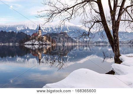 Amazing Sunrise At The Lake Bled In Winter