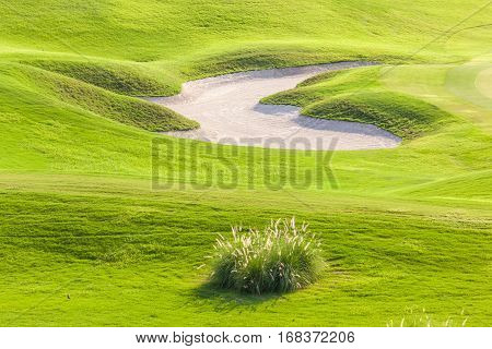 Irregular shape of sand bunker is fun and challenging hazard in beautiful green golf course.