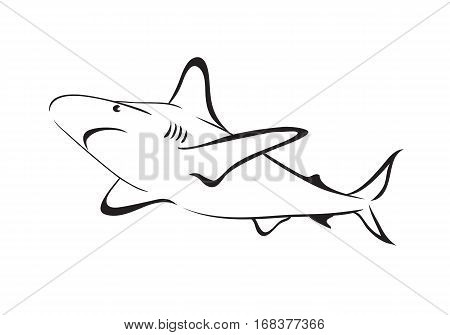 sharks outline icon isolated on white .Vector