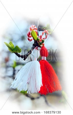 Red and white color Bulgarian Martenitsa spring sign on the tree branch