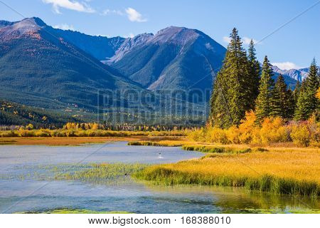 Beautiful Lake Vermilion in the mountains of Banff National Park. The Canadian province of Alberta, the Rocky Mountains. Perfect sunny day. Concept of active tourism and ecotourism