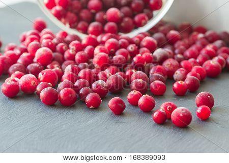 Northen Cranberries