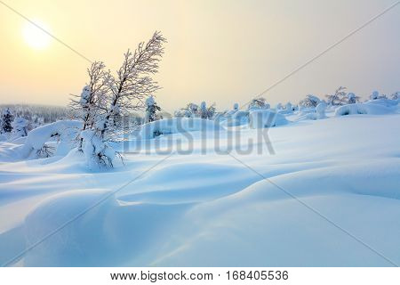 Big Snow Northern Winter Sunset Landscape - sparkling snow covered trees and big snowbanks, hills valley - wallpaper