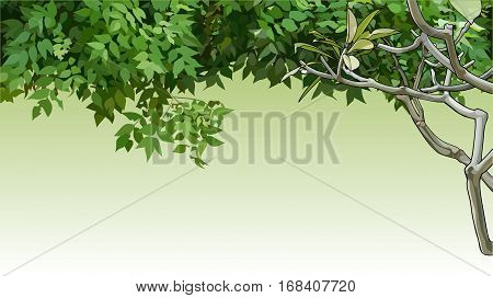 background with painted green leaves and branches