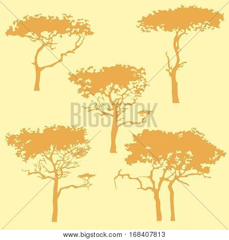 cartoon silhouette of different trees in ochre tones