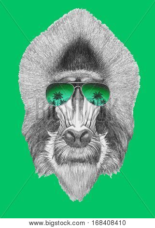 Portrait of Mandrill with mirror sunglasses. Hand drawn illustration.