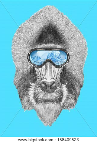 Portrait of Mandrill with ski goggles. Hand drawn illustration.