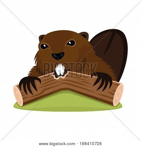 Sign of beaver on a white background.