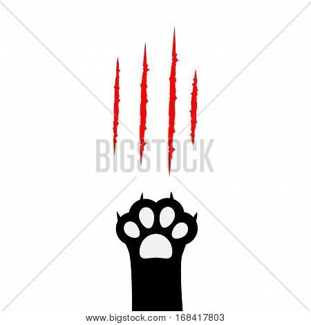 Black cat paw print leg foot. Bloody claws scratching animal red scratch scrape track. Cute cartoon character body part silhouette. Baby pet collection. Flat design. White background. Isolated. Vector