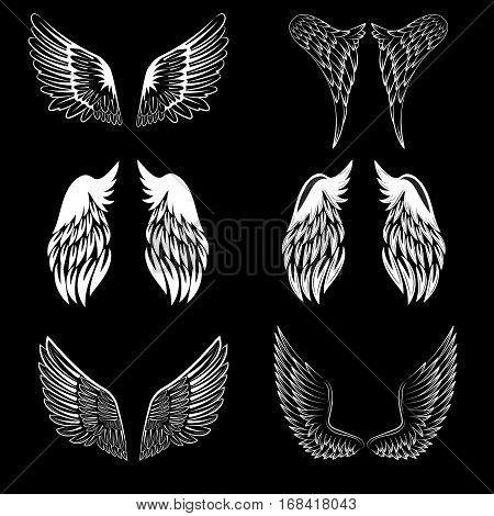 Black and white vector stylized heraldic bird wings showing only a single wing with feather detail